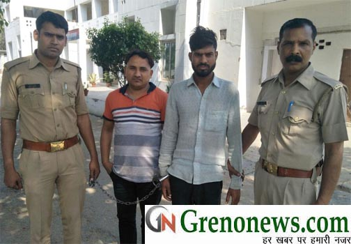 GANJA SMUGGLER ARRESTED