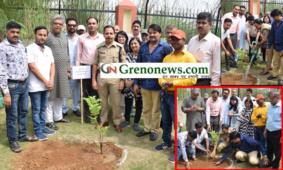 PLANTATION, MISSION ONE LAKH PLANT, GREATR NOIDA NEWS, IIMT