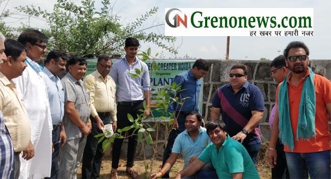 PLANTATION BY ROTARY CLUB GREEN GREATER NOIDA