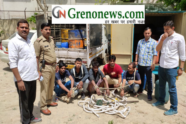 lootre arrested by noida police - Grenonews