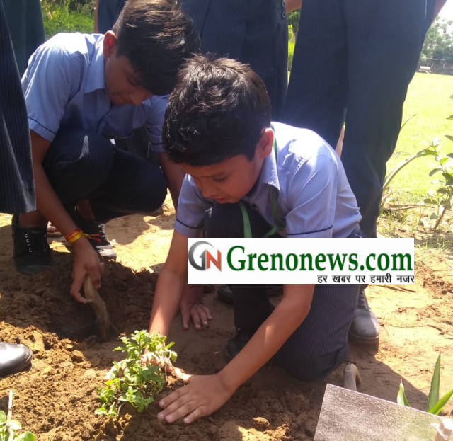 Earth day celebrated in Grads International School - Grenonews