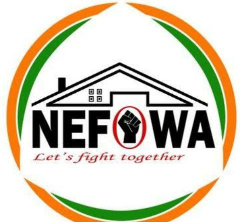 Logo nefowa