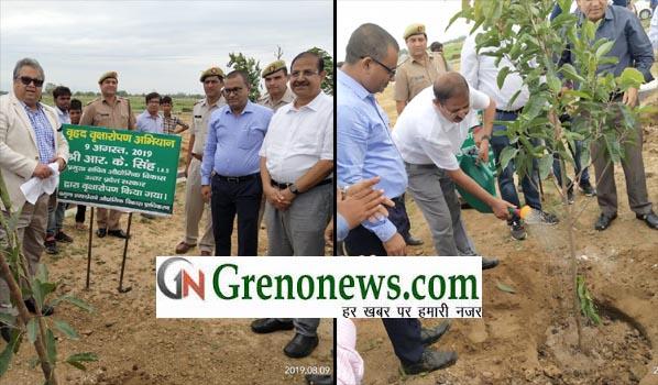PLANTATION IN YEIDA- GRENONEWS