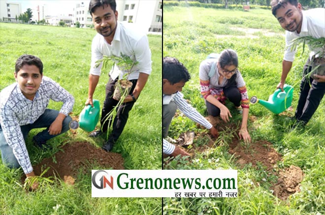 PLANTATION IN UNITED COLLEGE- GRENONEWS