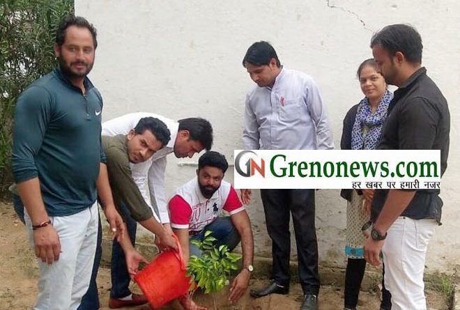 PLANTATION BY CORRUPTION FREE INDIA WORKERS- GRENONEWS